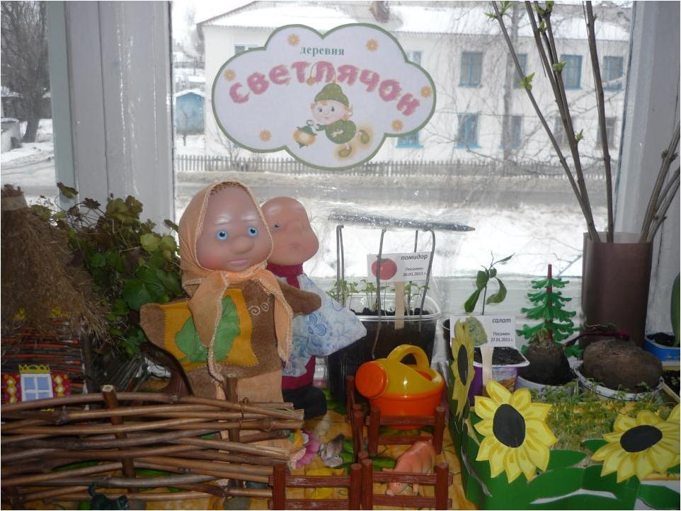 паспорт огород на окне подготовительная группа