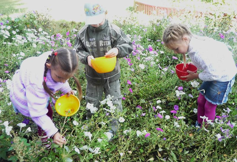 Для девочек сажать цветы